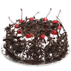 Tender Temptation Eggless Black Forest Cake