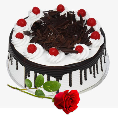 Tasty Eggless Black Forest Cake with Single Rose