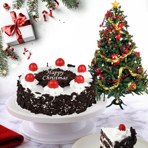 Indulgent Black Forest Cake with Christmas Tree