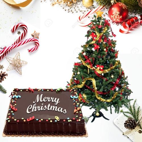 Special Gift of Silky Chocolate Cake with Xmas Tree