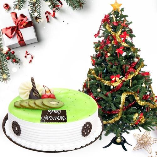 Tasty Kiwi Cake with Christmas Decor Tree