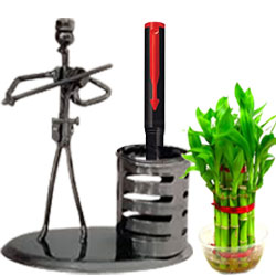Stunning Combo of Lucky Bamboo Plant with Parker Pen N Stand