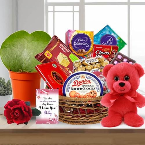 Indulgent Chocolate Delicacies Gift Hamper with Rose, Teddy N Plant