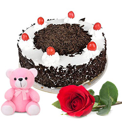 Fresh-Baked Black Forest Cake with Romantic Rose and Teddy