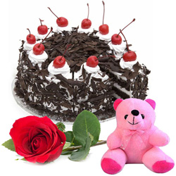 Perfect Anniversary Combo of Black Forest Cake with Rose and Teddy