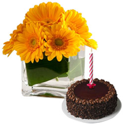 Midnight Delivery of Aromatic Gerberas in a vase with Soft Chocolate Cake and Candles