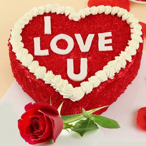Alluring Gift of Heart Shape Red Velvet Cake with Single Red Rose