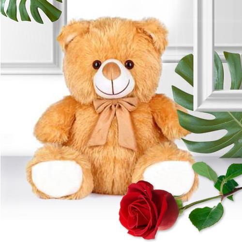 Wonderful Plush Teddy N Premium Single Rose V-Day Gift Combo