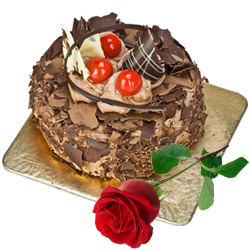 Delicious Chocolate Cake N Red Rose
