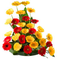 Arrangement of Colorful Gerberas online