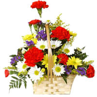 Special Basket Arrangement of Carnations and Gerberas
