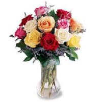 Colorful Roses in a Vase