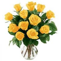 Stunning Yellow Roses in a Vase