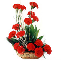 Mesmerizing Basket of Red Carnations