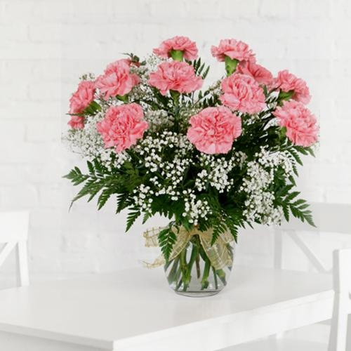 Stunning Pink Carnations in a Vase