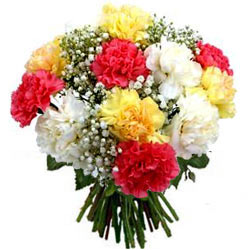 Charming Bunch of Mixed Carnations