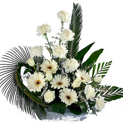 Mesmerizing Carnations N Gerberas Bouquet