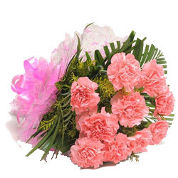 Cherished Bundle of Pink Carnations