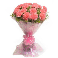 Amazing Pink Carnations Bunch