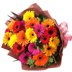 Awesome Bouquet of Assorted Gerberas