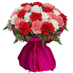 Ravishing Bouquet of Colorful Carnations