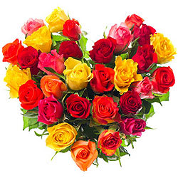 Pretty Heart Shape Arrangement of Assorted Roses