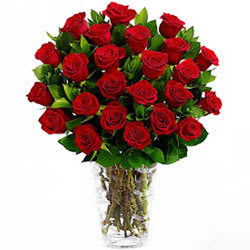 Romantic Deep Dark Red Roses in a Glass Vase