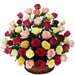 Wonderful Mix Coloured Roses Collection in Basket