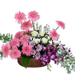 Fresh Assorted Flowers Basket Arrangement