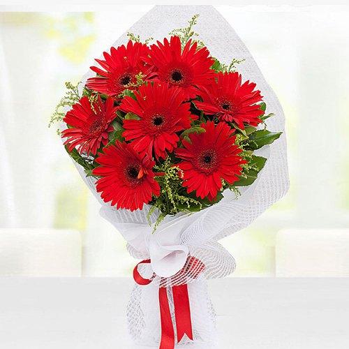 Attractive Red Gerberas Bouquet