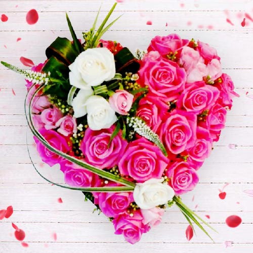 Designer Heart Shaped Arrangement of Pink N White Roses