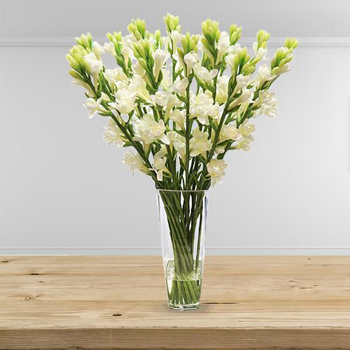 Cheerful Display of White Tube Roses Sticks in a Glass Vase