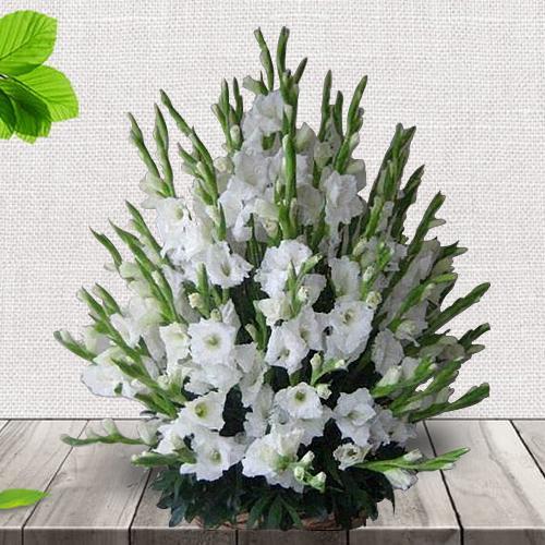 Graceful Basket Full of White Gladiolus