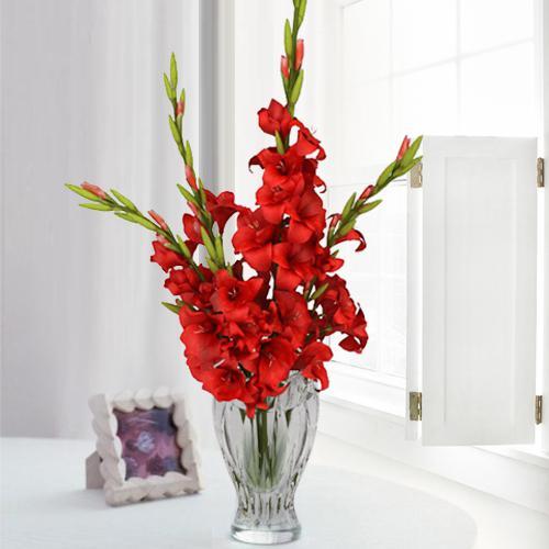 Marvelous Red Gladiolus Display in Glass Flower Vase
