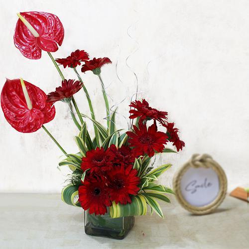 Delightful Red Gerbera n Anthodium Arrangement in Glass Vase