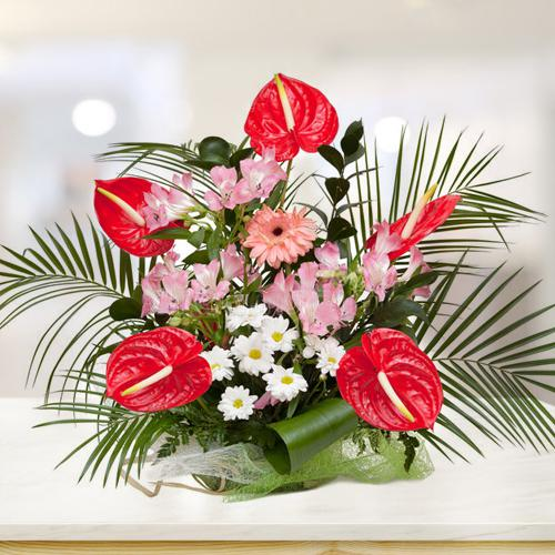 Captivating Anthodium n Assorted Flowers Arrangement