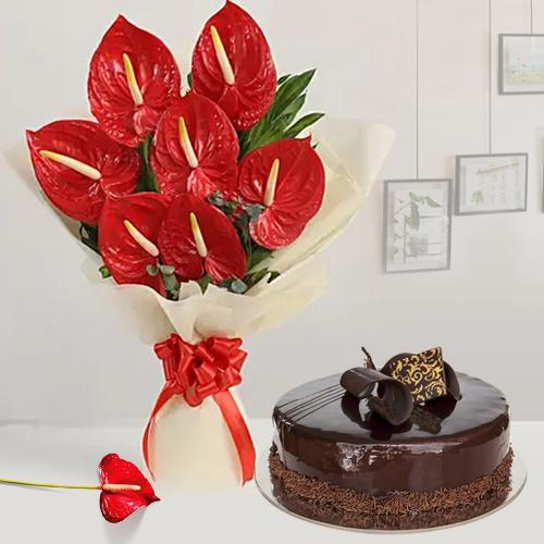 Alluring Bouquet of Anthodium with Chocolate Cake