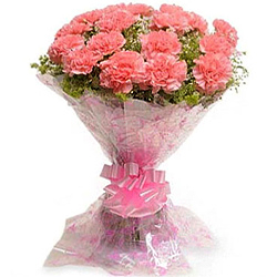 Shop for this fresh Bouquet of Carnations in Pink shade