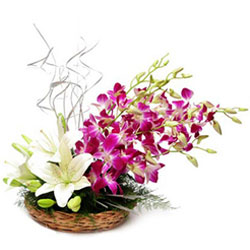 Amazing Lilies N Orchids Basket