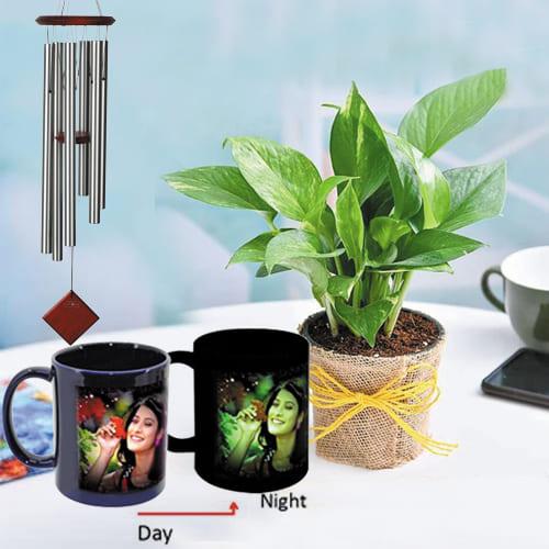 Lovely Personalized Photo Radium Mug with Money Plant N Wind Chime