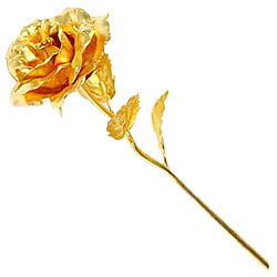 Marvelous Golden Rose Stick