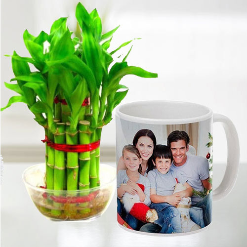 Stylish Personalized Coffee Mug with Two Tier Bamboo Plant