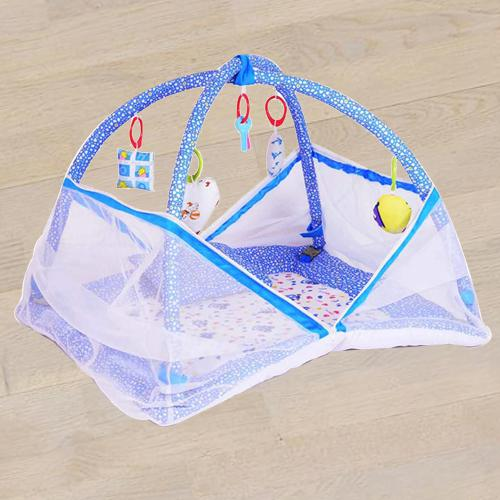 Amazing Kick and Play Gym with Mosquito Net N Bedding Set