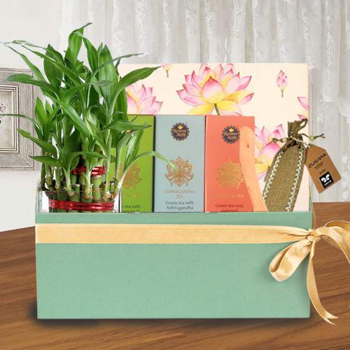 Amazing Healing Gift Combo for Mother