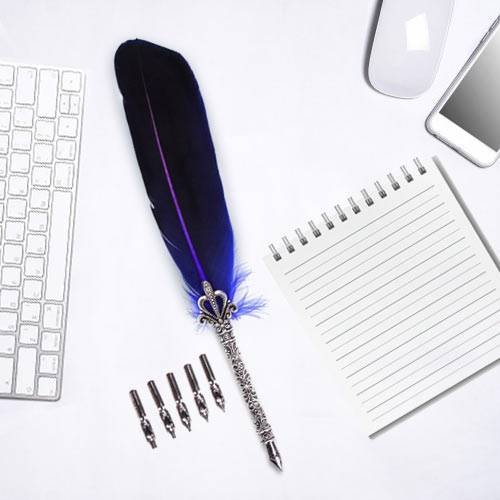 Wonderful Calligraphy Quill Set