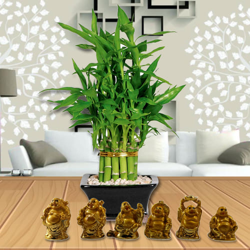 Marvelous Two Tier Bamboo Plant with Set of Laughing Buddha