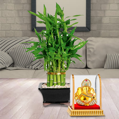 Auspicious Gift of Vighnesh Ganesh Idol with 2 Tier Lucky Bamboo Plant