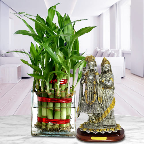 Fantastic Gift Set of Radha Krishna Idol with 2 Tier Lucky Bamboo Tree