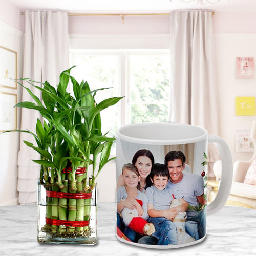 Just For You Gift of 2 Tier Lucky Bamboo Tree in Personalized Coffee Mug