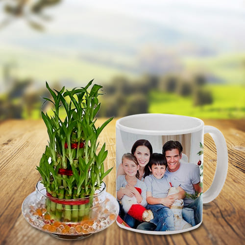 Exotic Gift of Triple Layer Bamboo Luck Plant in a Personalized Coffee Mug